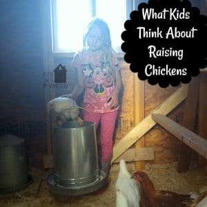 What Kids Think About Raising Chickens