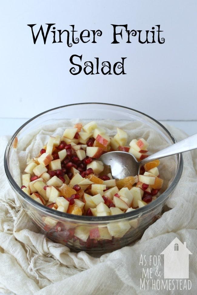 winter-fruit-salad-dairy-free