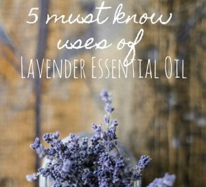 Lavender Essential Oil: 5 Uses