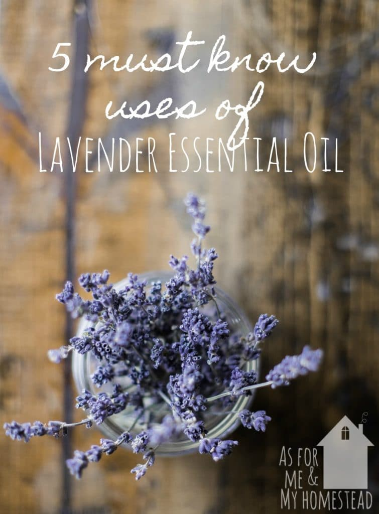 Find out how to use lavender essential oil for your skin, along with more uses for lavender essential oil. From hair care to nausea, and many more!