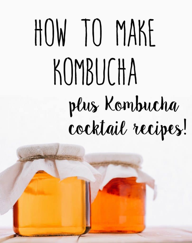 Kombucha is all the rage these days! Get the recipe to make your own kombucha, plus recipes for 2 fun kombucha cocktails!