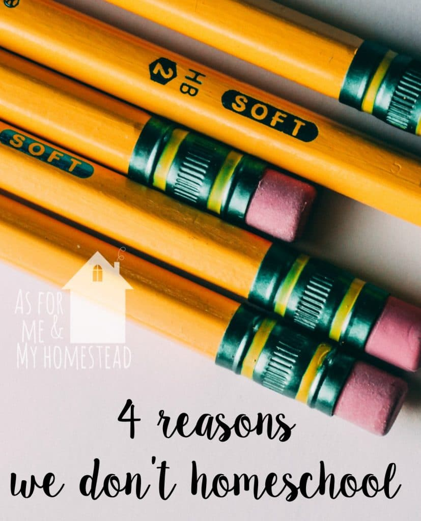 Find out the top 4 reason we don't homeschool