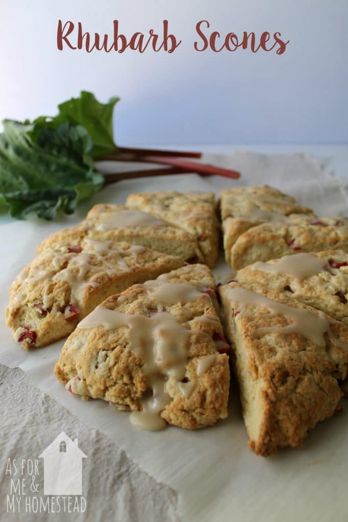 Soft and fluffy scones packed full of fresh rhubarb.  These Rhubarb Scones are the perfect spring treat!