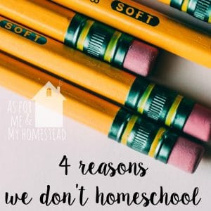 4 Reasons We Don't Homeschool