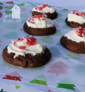 Chocolate Candy Cane Cookies with Peppermint Frosting