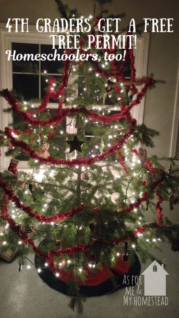 Christmas Blessings Giveaway As For Me And My Homestead