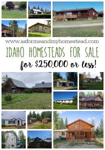 Idaho Homesteads for Sale January