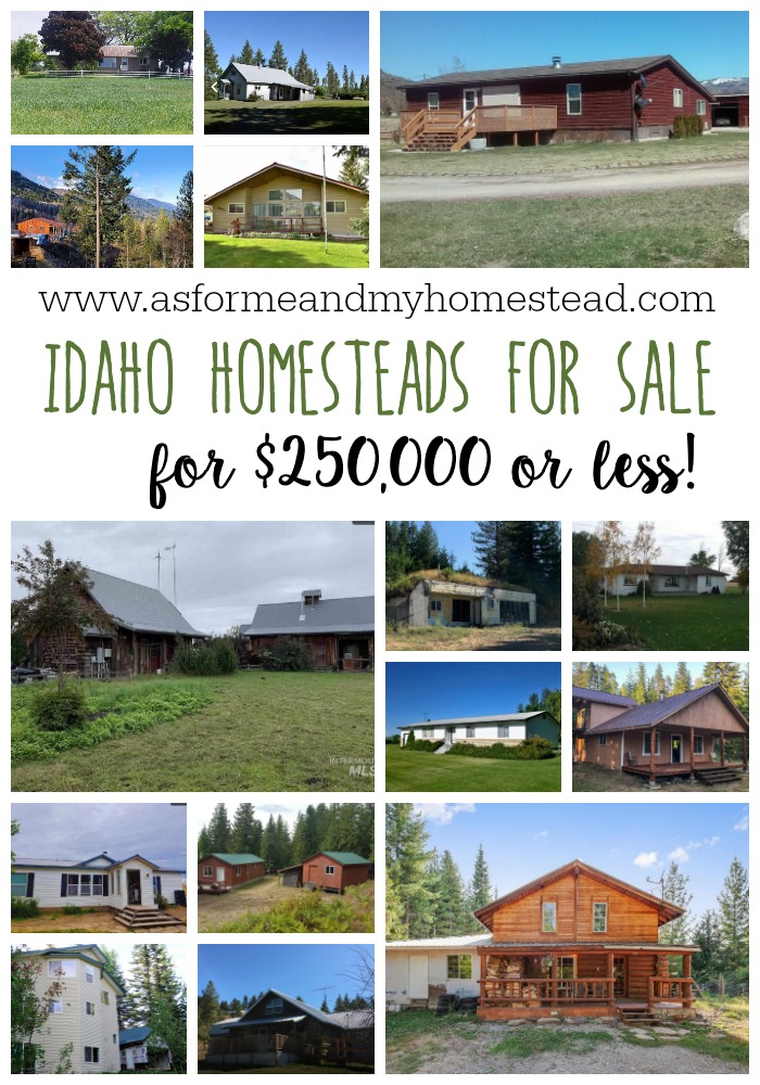 Find the perfect Idaho Homestead. Your dream to live a more independent life can become a reality! A variety of Idaho Homesteads for sale for under $250,000.