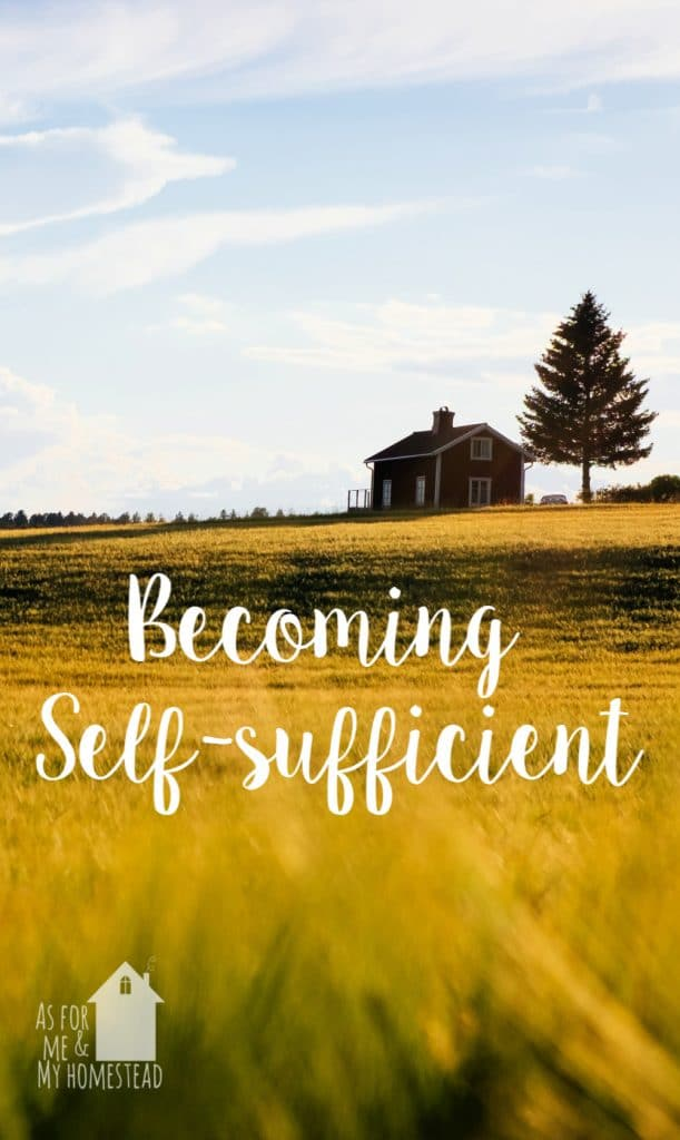 Find out how you can become self-sufficient. Learn to provide for your own needs, and what skills are needed for a self-reliant life.