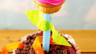 Cupcake Flower Pots - An Edible DIY gift