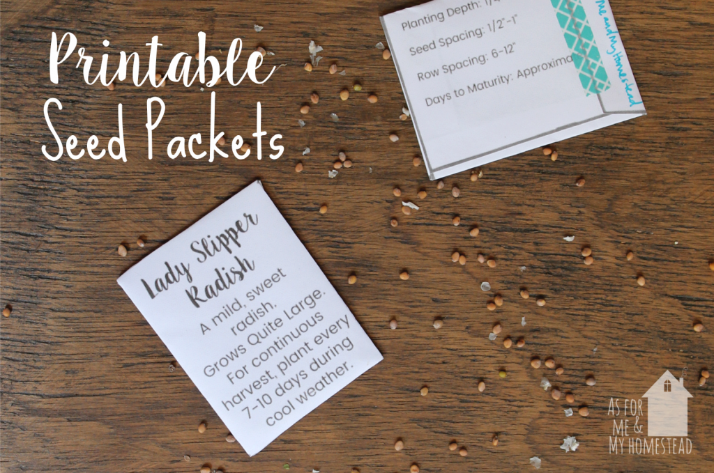 Seed Packet Template (with fill-in-the-blanks, or completely blank) makes it easy to save seeds or participate in seed swaps!